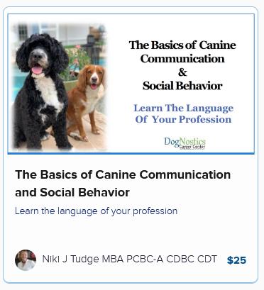 The Basics of Canine Communication and Social Behavior