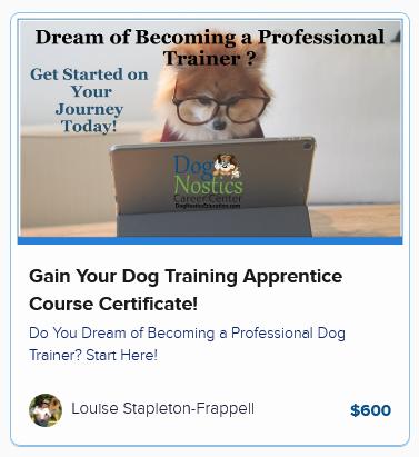 Gain Your Dog Training Apprentice Course Certificate!
