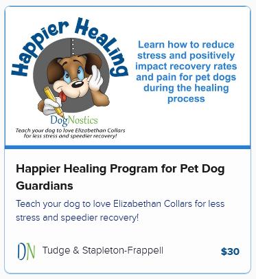 Happier Healing Program for Pet Dog Guardians