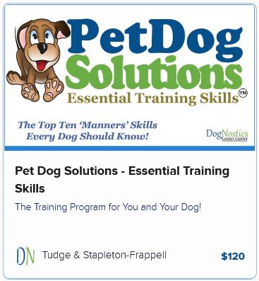 Pet Dog Solutions – Essential Training Skills