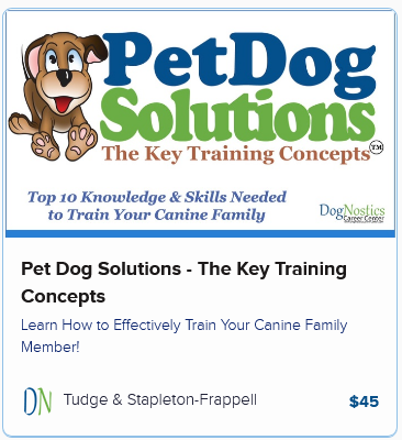 Pet Dog Solutions – The Key Training Concepts