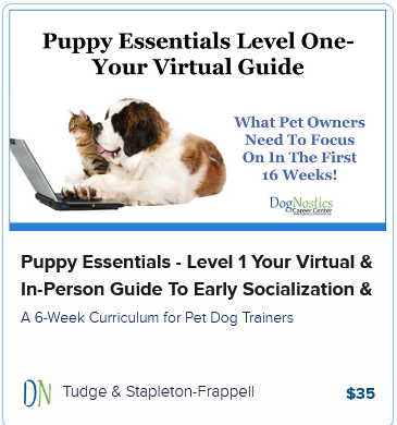 Puppy Essentials – Level 1 Your Virtual & In-Person Guide To Early Socialization & Development