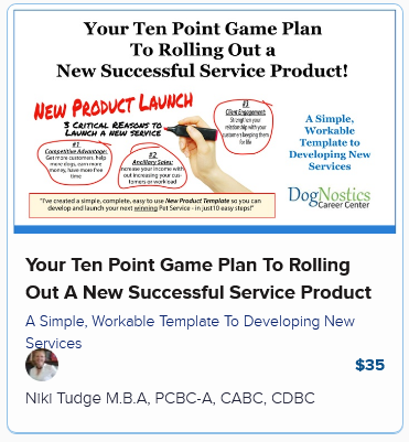 Your Ten Point Game Plan To Rolling Out A New Successful Service Product