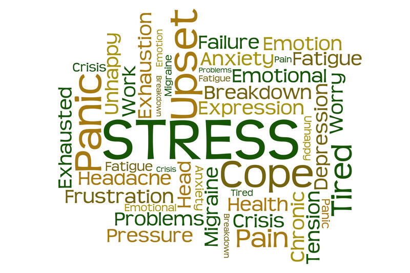 Stress Busting Tips for Humans and Pets!